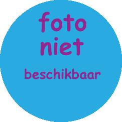 Henk Bolwiender